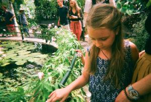 Ioana Birdu Kew Gardens