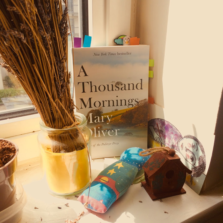 A thousand morning by Mary Oliver